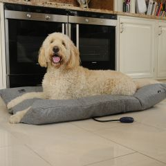 Hot Dog Sledmere Heated Dog Pillow